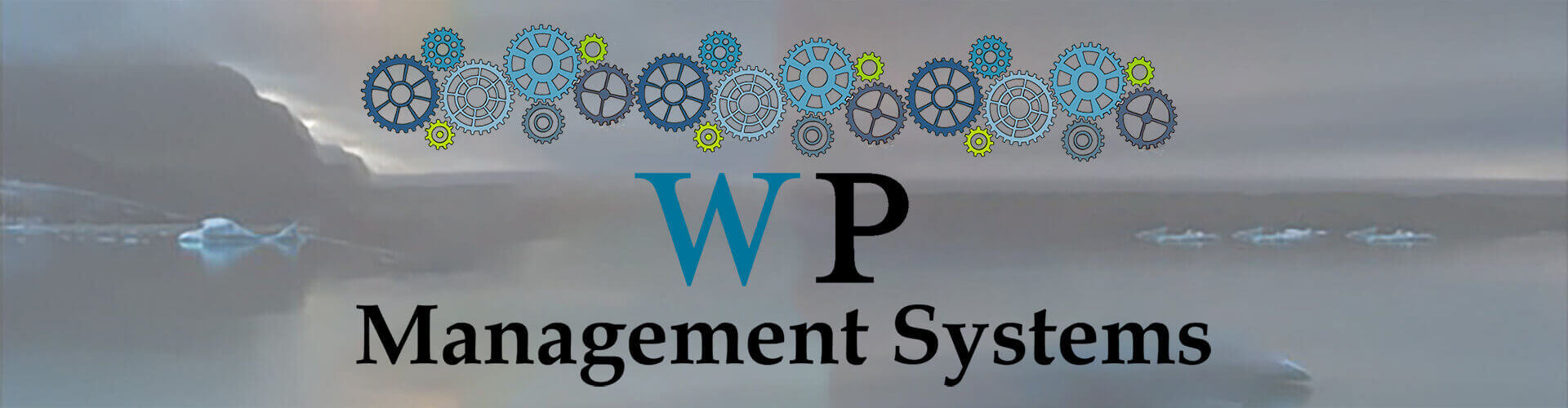 WordPress Management Systems Header Picture